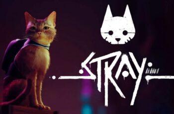 Излезе геймплей трейлър за Stray